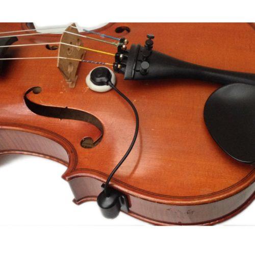 cvx_violin_ischell
