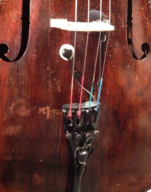 ischell-acvx-cello