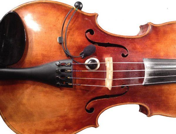 ischell-acvx-violin