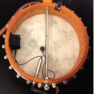 banjo-inside-j48c-ischell