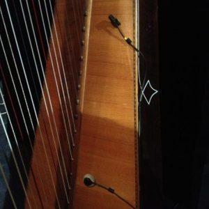 harpe-micro-de-contact-et-aerien-ischell